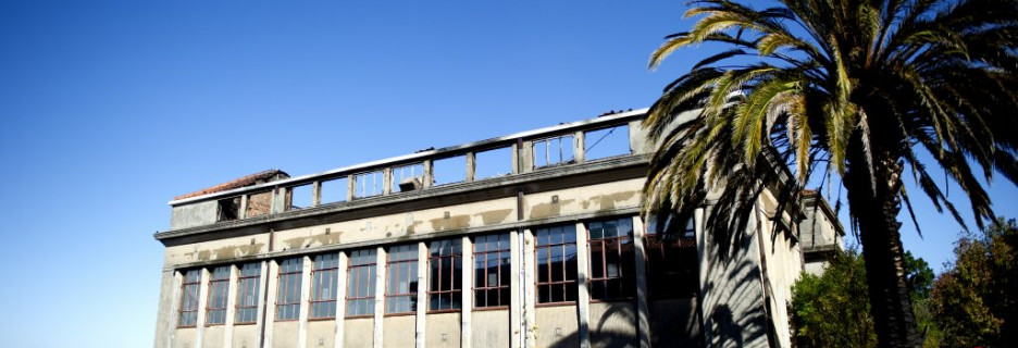 Damage to UCT Plant Conservation Unit